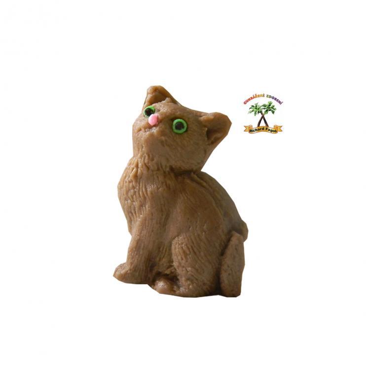 malé dospívající kočička video